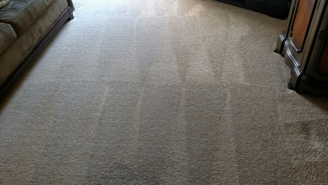 Cleaned carpet for a new PANDA customer in Gilbert, AZ 85233.