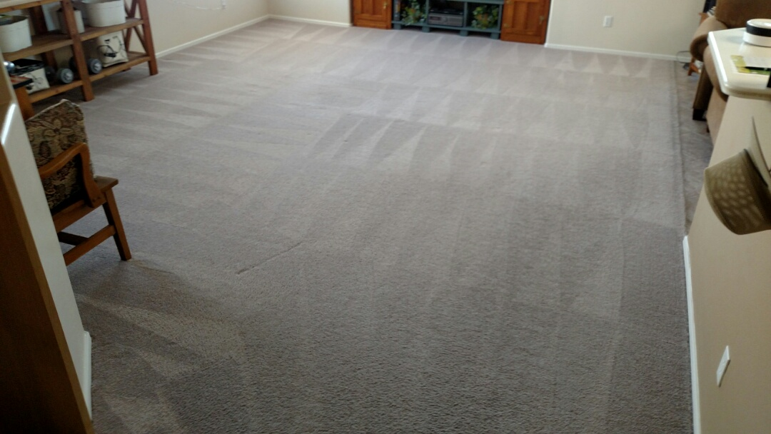 Gilbert, AZ - Cleaned carpet for a regular PANDA family in Gilbert, AZ 85296.