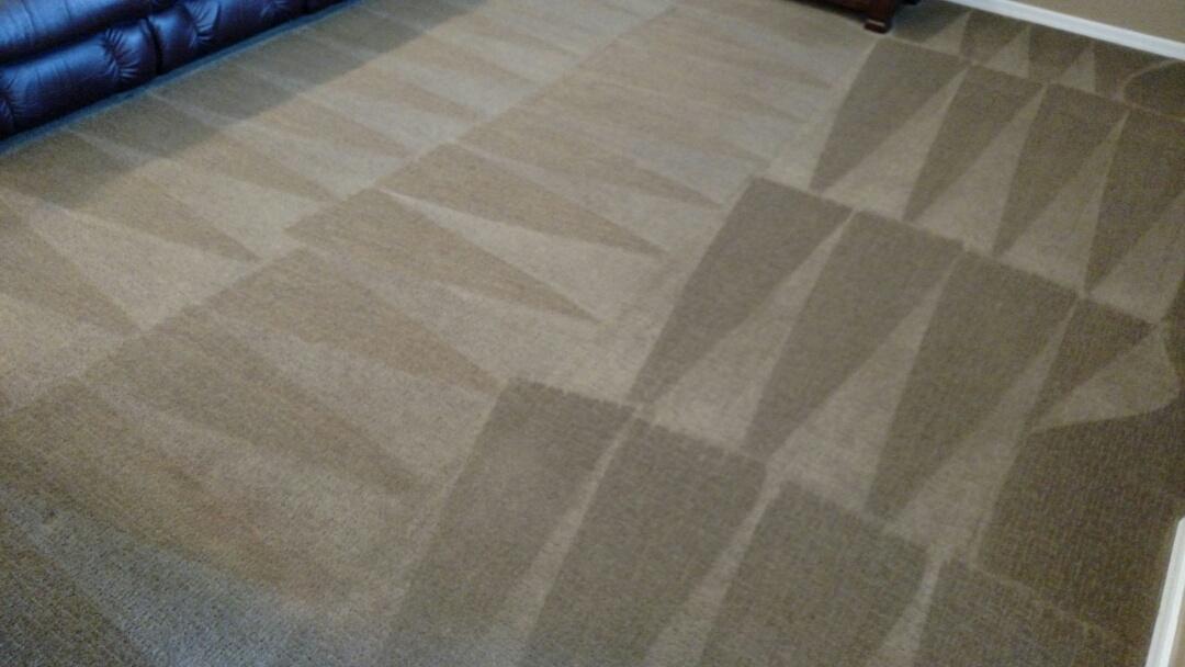 Clean the carpet for a regular PANDA family in Power Ranch, Gilbert, AZ 85297.