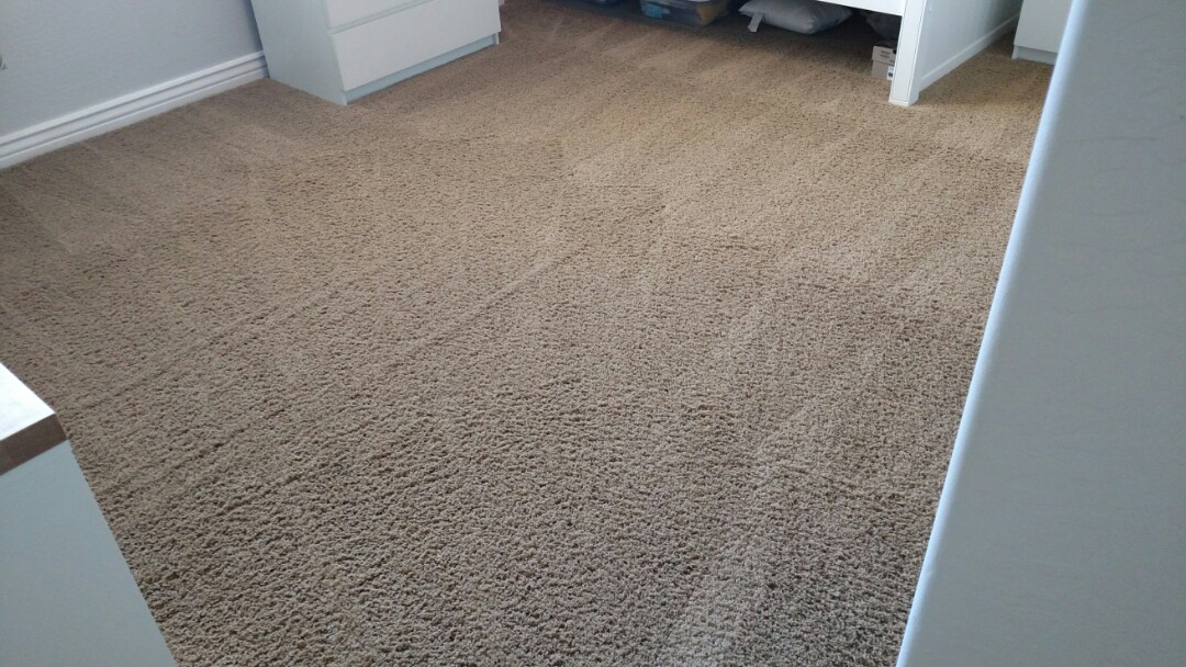 Cleaned carpet and removed stains for a regular PANDA family in Queen Creek, AZ, 85142.