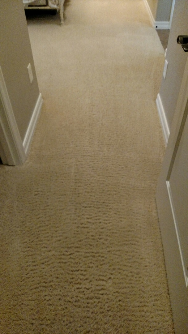 Cleaned carpet & extracted pet stains for a regular PANDA customer in Freeman Farms, Gilbert, AZ 85298.