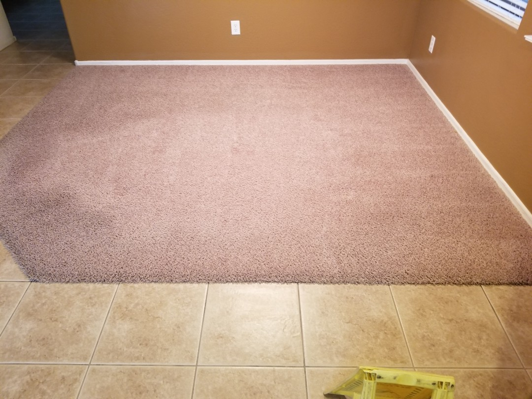 Cleaned carpet for a new PANDA customer in Lyon's Gate, Gilbert, AZ 85295.