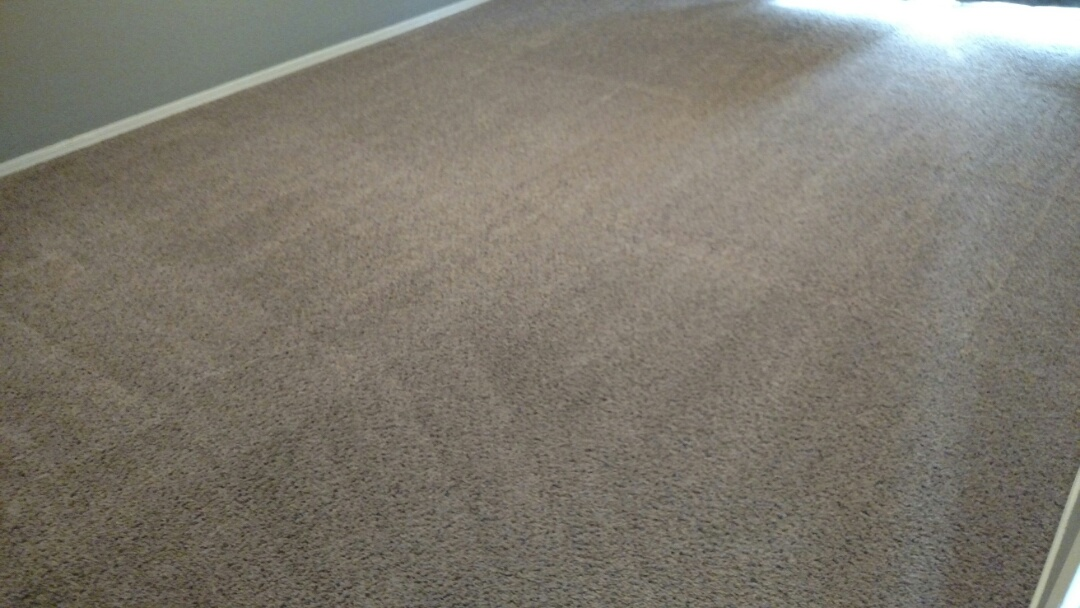 Mesa, AZ - Cleaned carpet for a new PANDA customer in Mesa, AZ 85202.