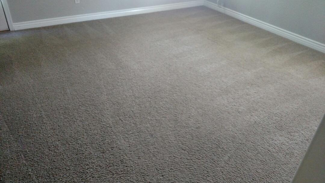 Cleaned carpet for a regular PANDA customer in Gilbert, AZ 85295.