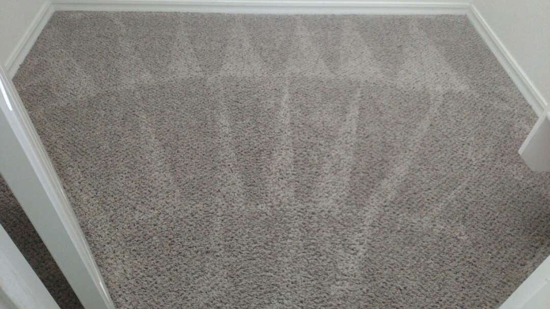 Cleaned carpet for a new PANDA family in Queen Creek, AZ 85142.