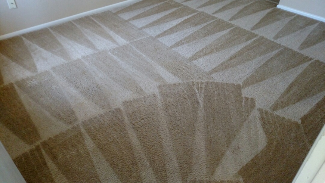 Cleaned carpet for a regular PANDA customer in Gilbert, AZ 85297.