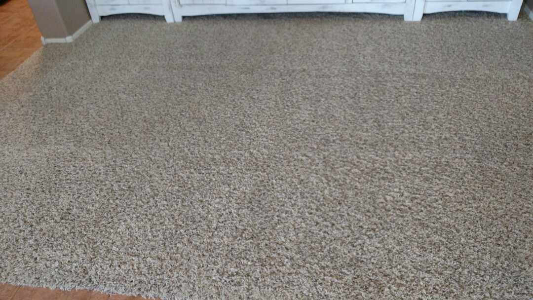 Cleaned carpet & heavily stained areas for a new PANDA family in Mesa, AZ 85209.