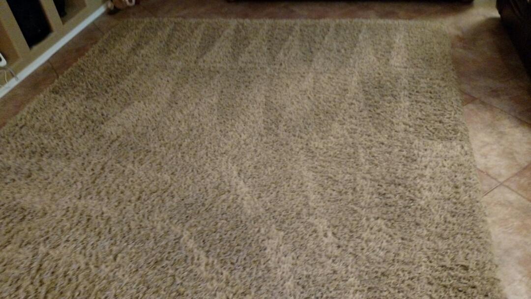 Cleaned carpet for a regular PANDA customer in Glendale, AZ 85308.