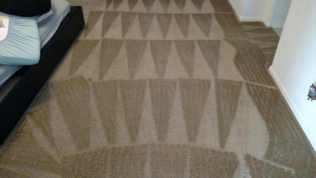 Cleaned carpet for a regular PANDA family in Morrison Ranch, Gilbert, AZ 85298.
