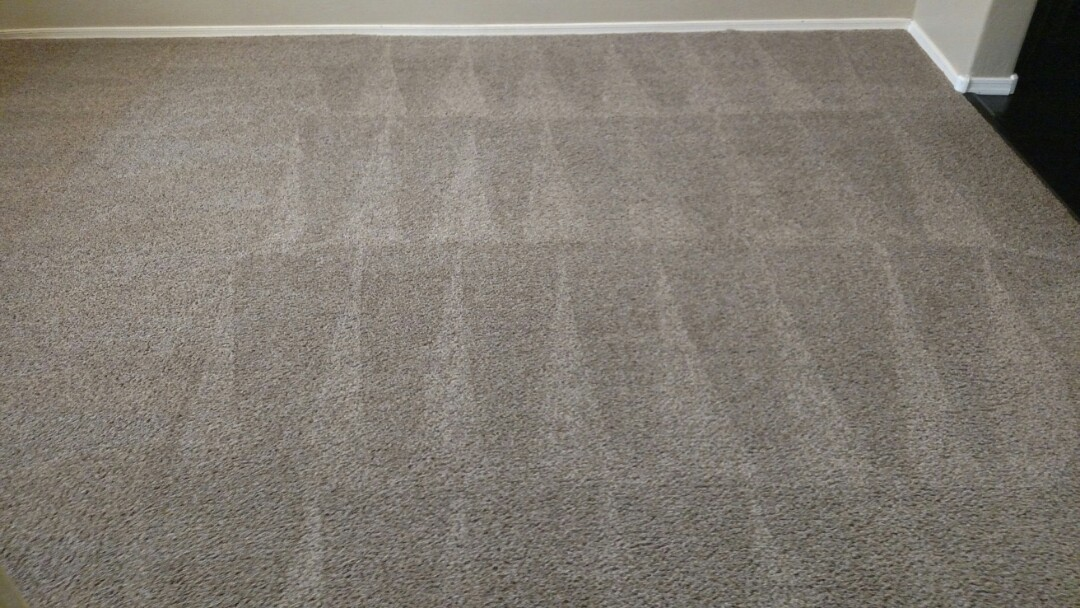 Cleaned carpet for a regular PANDA family in Gilbert, AZ 85295.