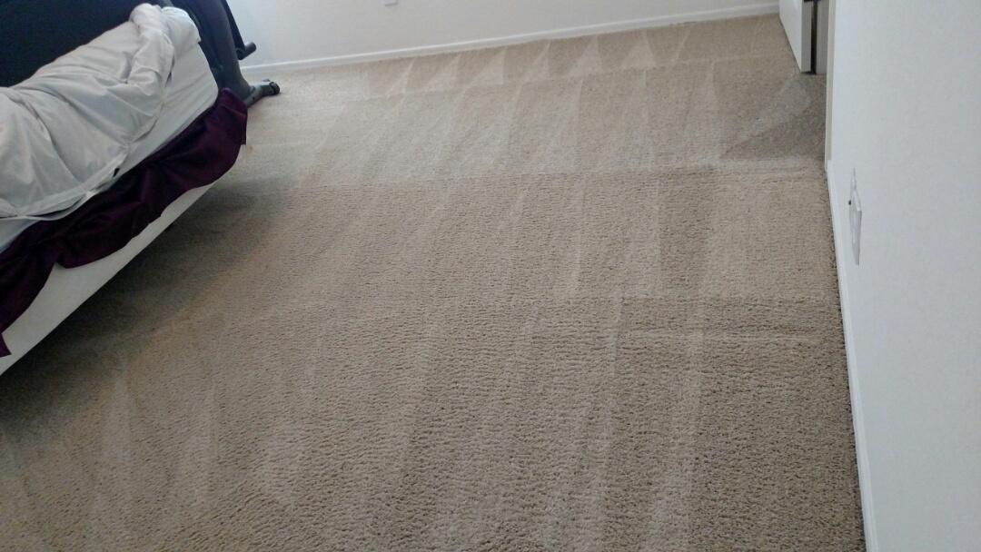 Gilbert, AZ - Cleaned carpet, upholstery & an area rug for a new PANDA customer in The Willows, Gilbert, AZ 85295.