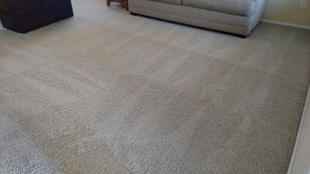 Gilbert, AZ - Cleaned carpet, tile and upholstery for a new PANDA family in Gilbert, AZ 85295.
