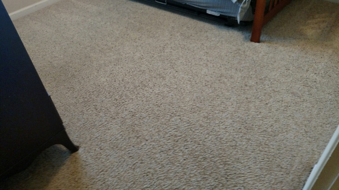 Cleaned carpet for a regular PANDA family in Mesa, AZ 85205