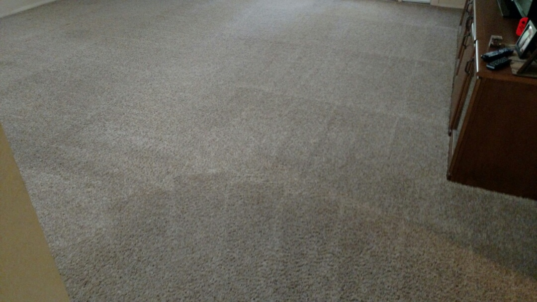 Cleaned carpet for a regular PANDA family in Chandler, AZ 85226.