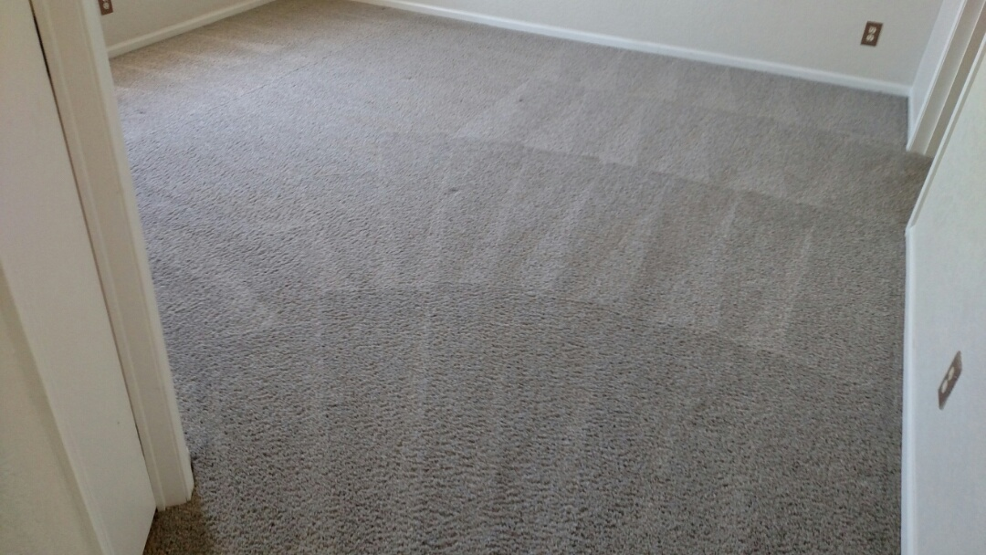 Cleaned carpet & extracted pet urine for a new PANDA family in Apache Junction, AZ 85120.