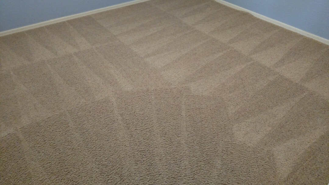 Gilbert, AZ - Cleaned carpet & extracted pet issues for a regular PANDA customer in Ashley Heights, Gilbert, AZ 85295.