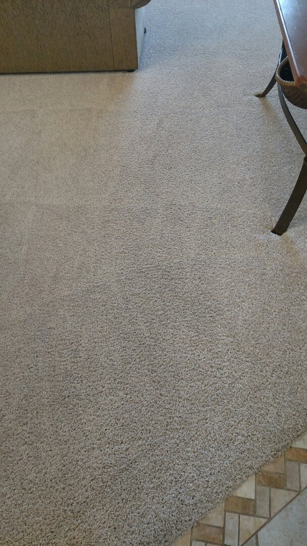 Cleaned carpet and extracted stains for a new PANDA client in Chandler, AZ 85248.