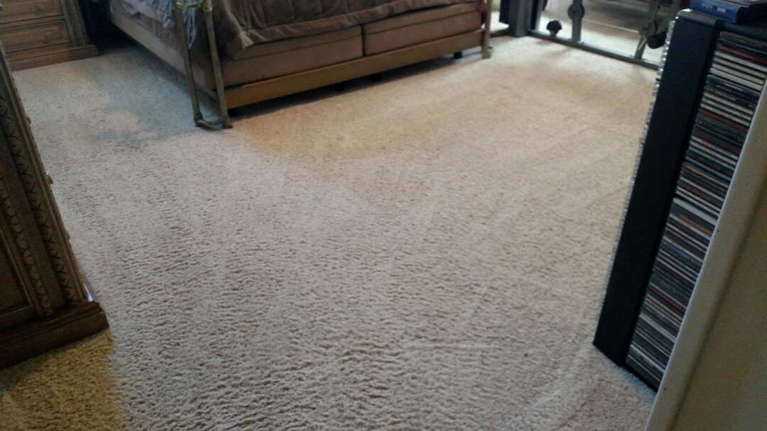 Cleaned carpet & extracted pet urine for a regular PANDA customer in Tempe, AZ 85284.