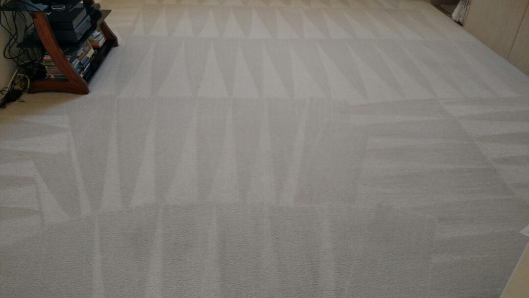 Cleaned carpet for a regular PANDA customer in Ahwatukee, Phoenix, AZ 85048.