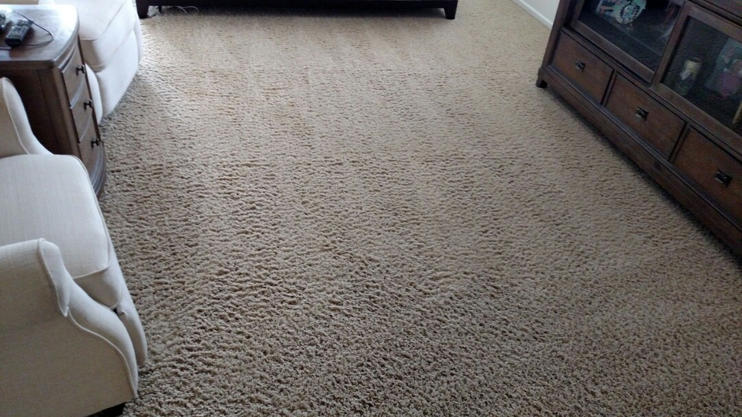 Gilbert, AZ - Cleaned carpet & extracted pet feces for a regular PANDA family in Ashley Heights, Gilbert, AZ 85295.