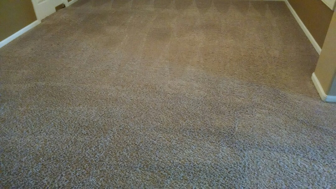 Mesa, AZ - Completed cleaning carpet for a regular PANDA family in their new home, in Mesa AZ, 85212.