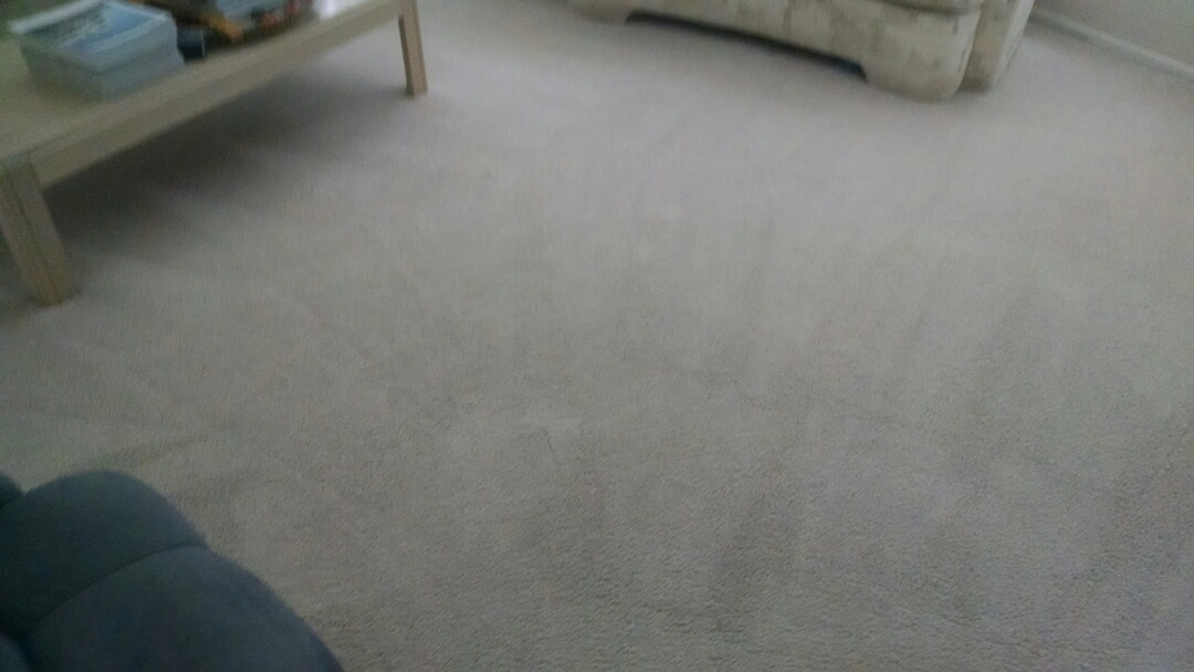 Mesa, AZ - Completed cleaning carpet for a new PANDA family in Mesa AZ, 85206.