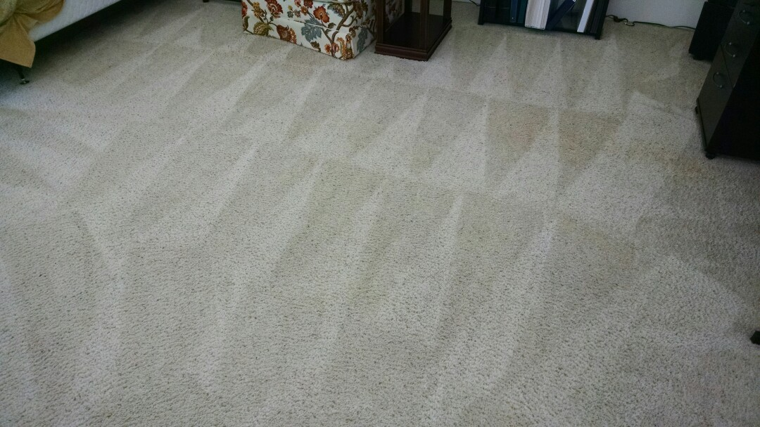 Completed cleaning carpet for a regular PANDA family in Paradise Valley AZ 85253.