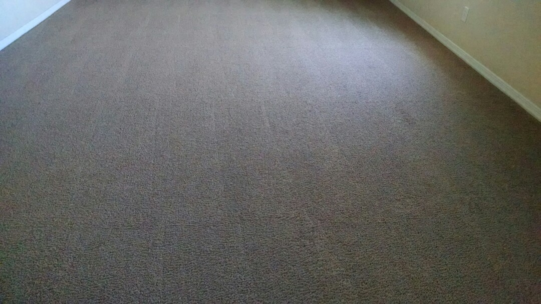 Completed cleaning carpet for a new PANDA family in Florence AZ 85132