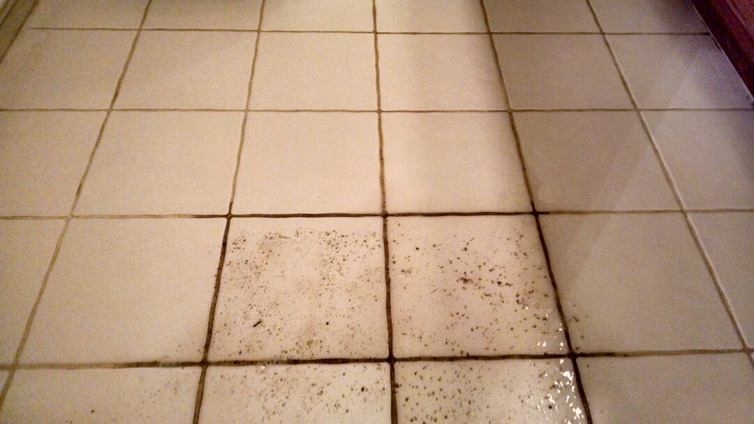 Mesa, AZ - Cleaned tile and grout for a tenant of a new PANDA customer in Leisureworld, Mesa, AZ 85208