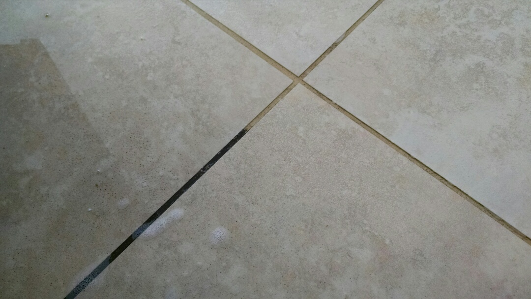 Cleaned carpet, tile and grout for a new PANDA family in Chandler AZ 85286.