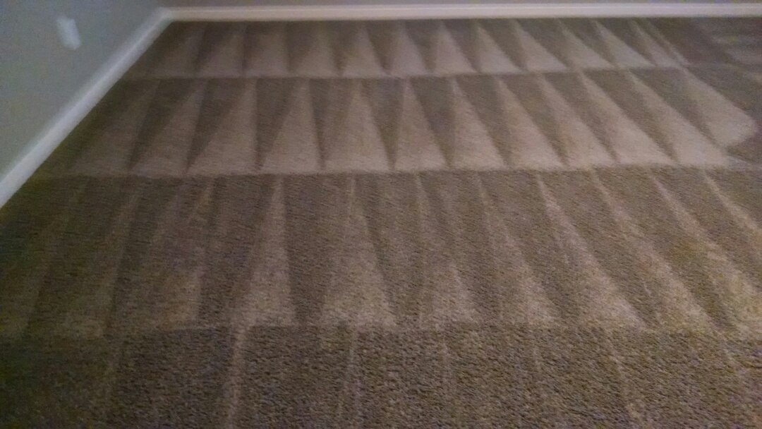 Mesa, AZ - Cleaned carpet & extracted cat urine for a regular PANDA family in Lehi Crossing, Mesa AZ 85213.