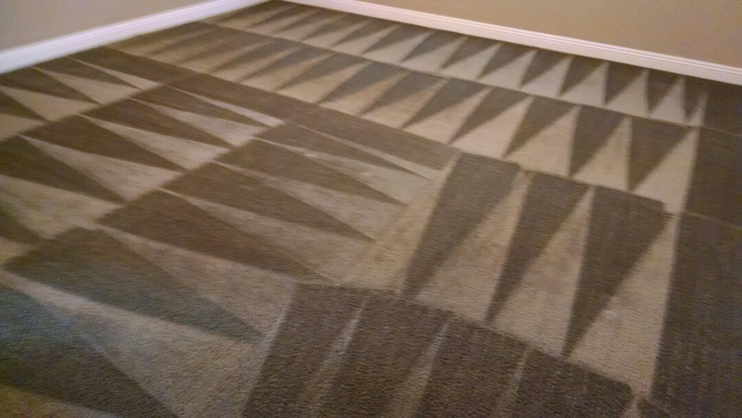 Cleaned carpet for a new PANDA family in San Tan Valley AZ 85143.