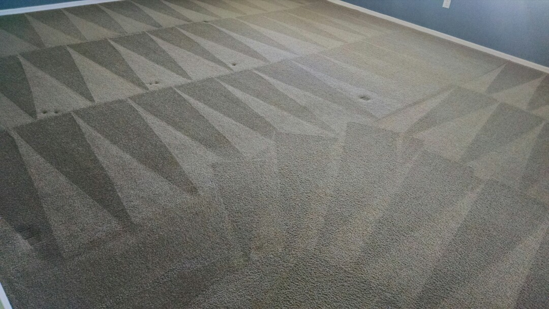 Cleaned carpet for a new PANDA family in Gold Canyon AZ 85118.