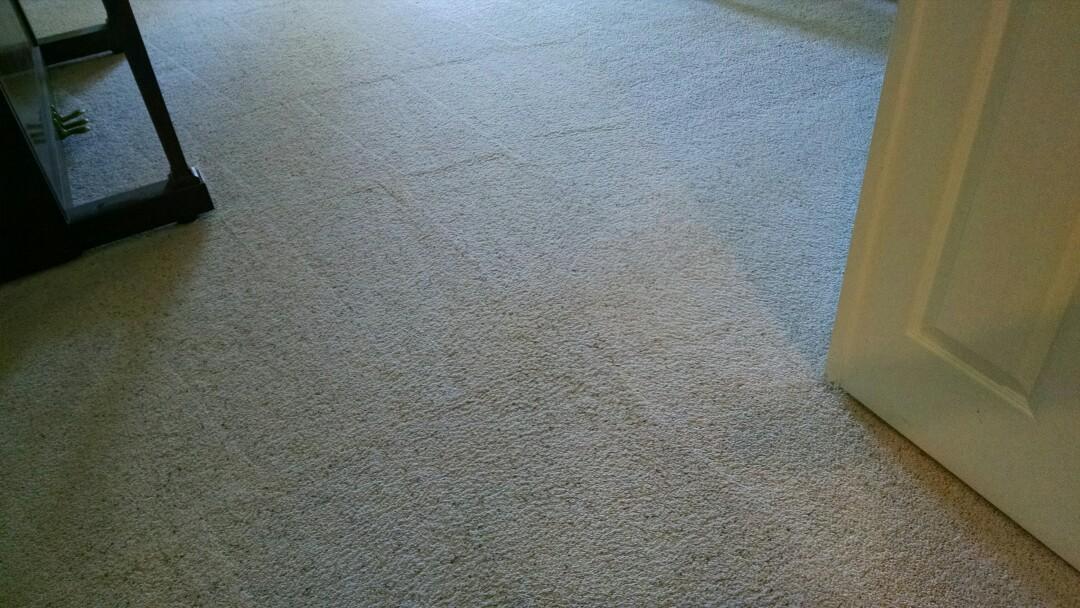 Chandler, AZ - Cleaned carpet for a new PANDA family in Chandler AZ 85249.