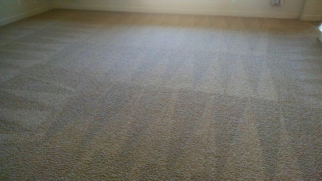 Gilbert, AZ - Cleaned carpet for a new PANDA family in Power Ranch Gilbert AZ 85297.