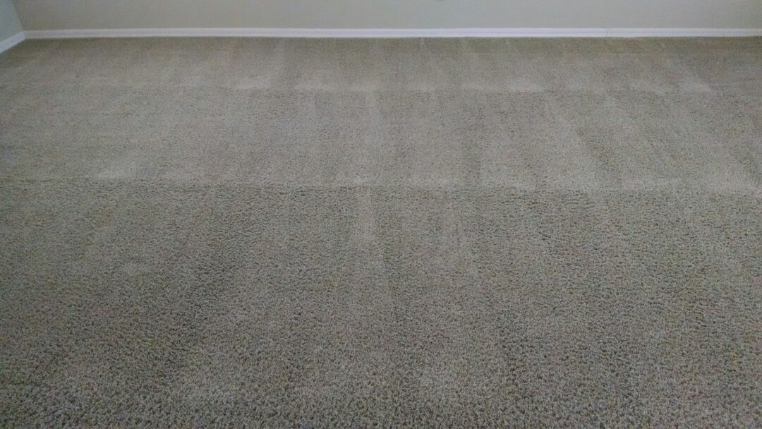 Chandler, AZ - Cleaned carpet for a new PANDA family in Chandler AZ 85225.