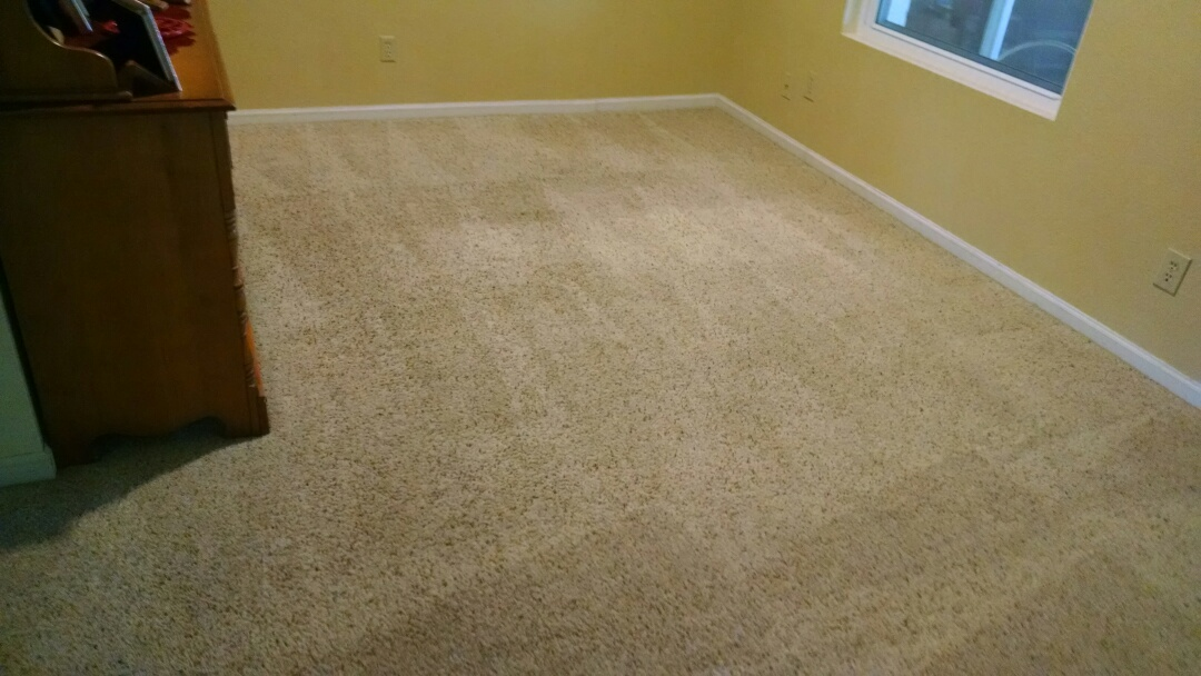 Mesa, AZ - Cleaned carpet for a regular PANDA family in Mesa AZ 85205.