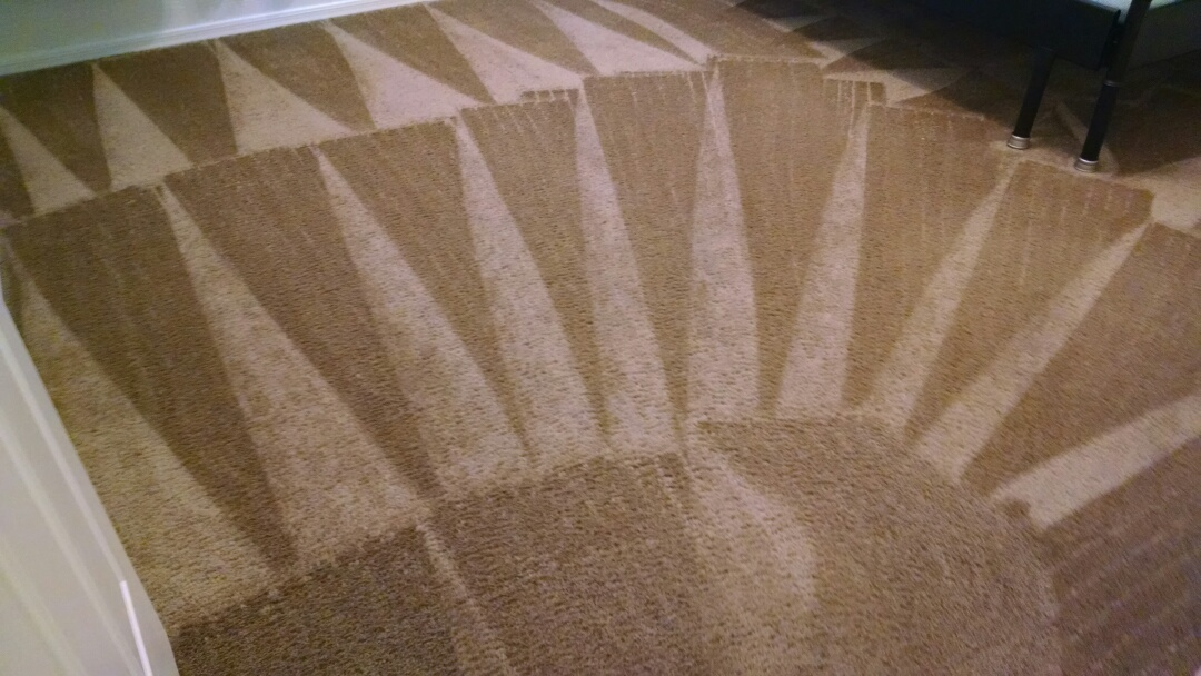 Cleaned carpet for a regular PANDA family in Gilbert AZ 85296.