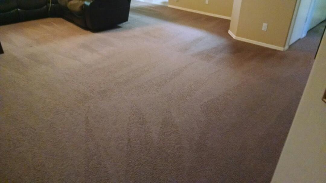 Cleaned carpet for a new PANDA family in Gilbert AZ 85295.