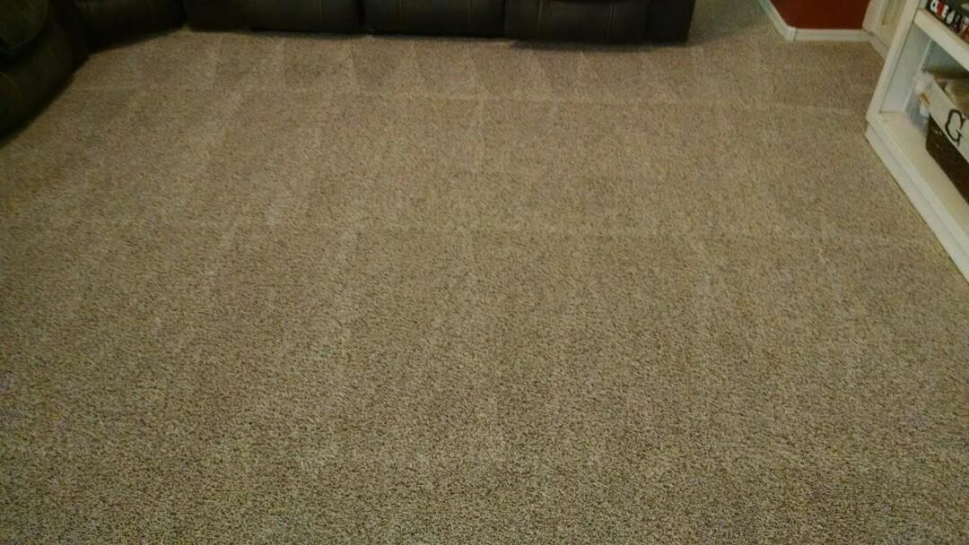 Gilbert, AZ - Cleaned carpet & extracted pet urine for a regular PANDA family in Gilbert AZ 85295.