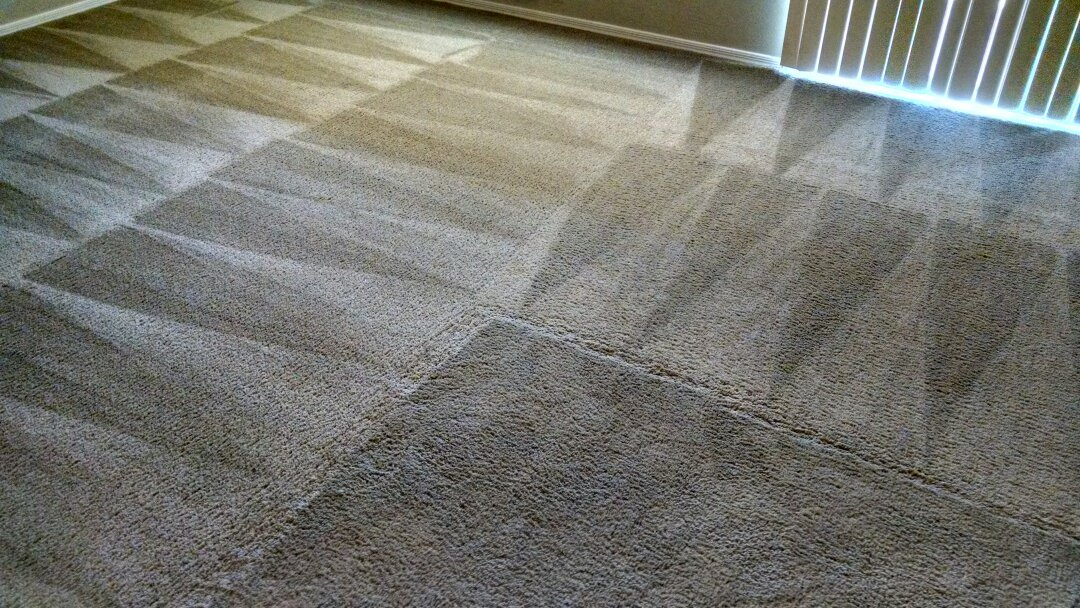 Gilbert, AZ - Cleaned carpet and extracted dog urine for a new PANDA family in Gilbert AZ 85295.