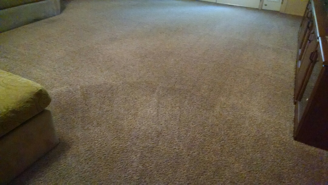 Chandler, AZ - Cleaned carpet for a regular PANDA family in Chandler AZ 85226.