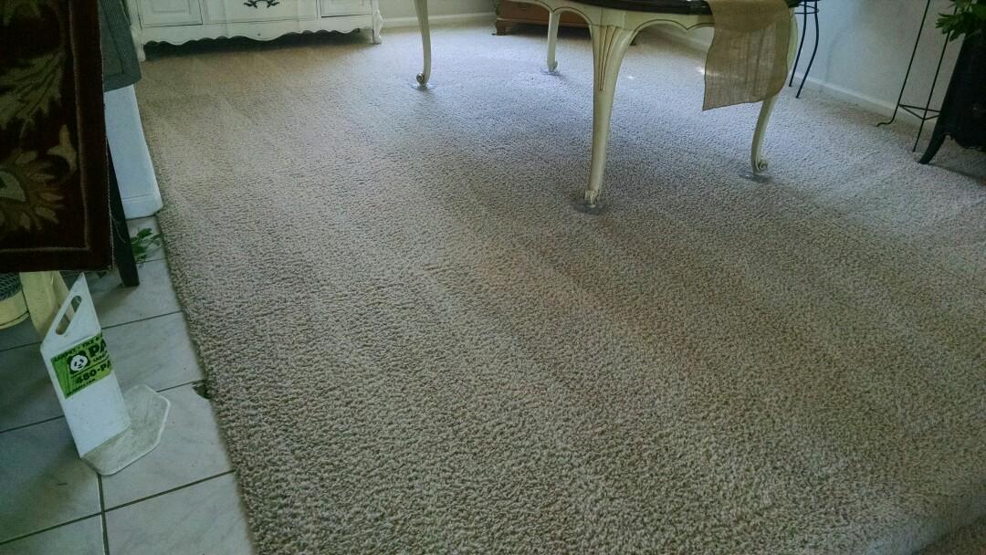 Gilbert, AZ - Cleaned carpet for a regular PANDA family in Gilbert AZ 85233.