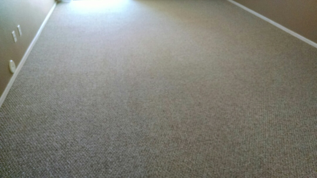 Cleaned carpet and extracted dog urine for a new PANDA customer in San Tan Valley AZ 85143.
