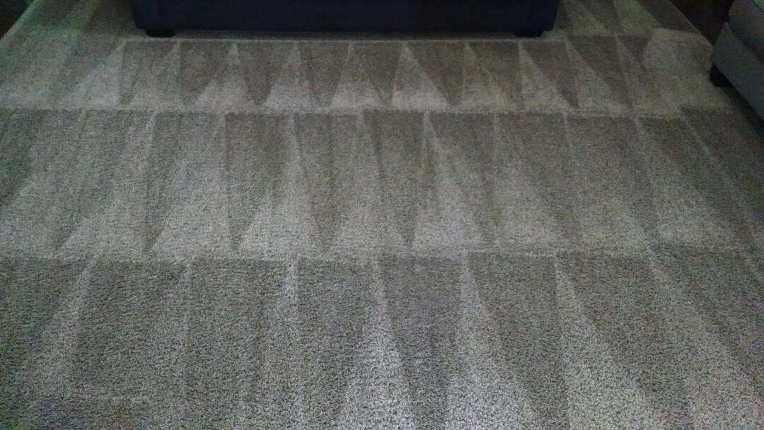 Gilbert, AZ - Cleaned carpet and an area rug for a regular PANDA family in Gilbert AZ 85298.
