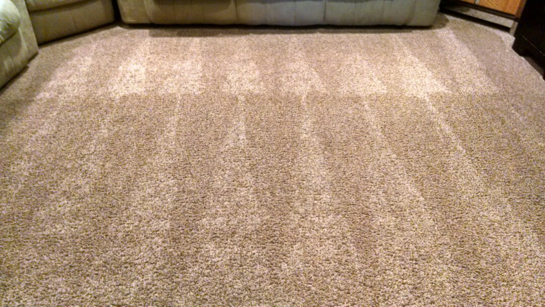Gilbert, AZ - Cleaned carpet and extracted pet urine & vomit for a regular PANDA family in Gilbert AZ 85296.