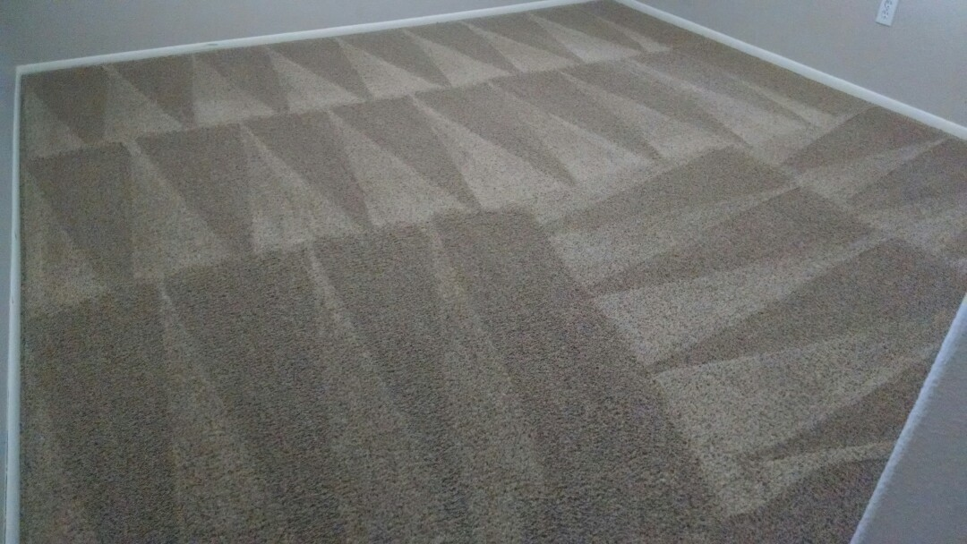 Cleaned carpet for a new PANDA customer in Chandler AZ 85225.