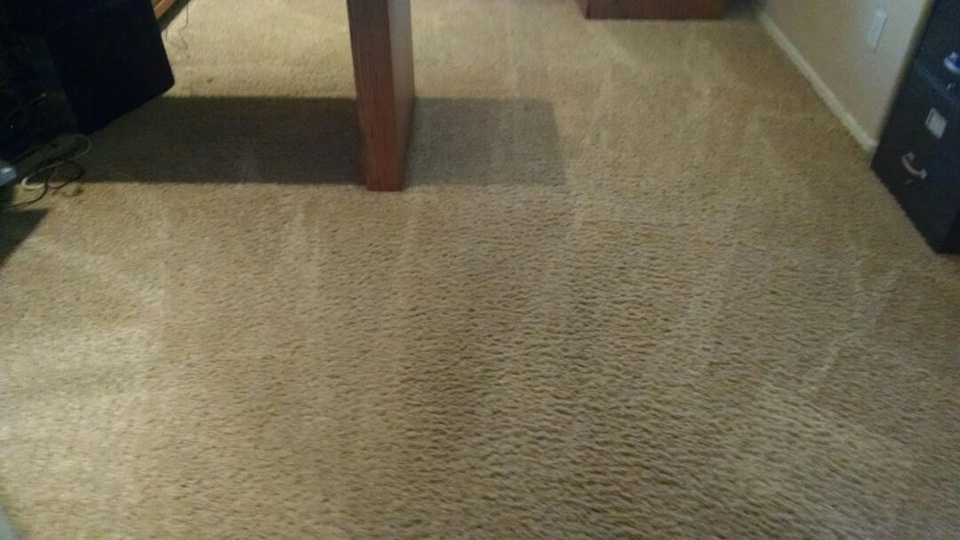 Gilbert, AZ - Cleaned carpet for a regular PANDA family in Ashley Heights Gilbert AZ 85295.