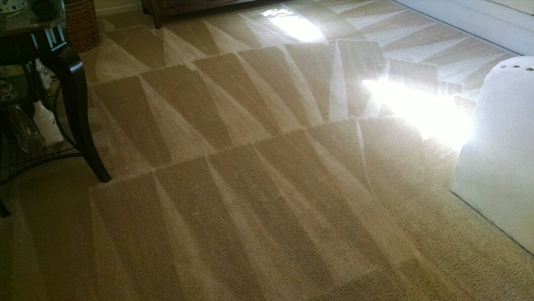Gilbert, AZ - Cleaned carpet for a new PANDA customer in Gilbert AZ 85297.