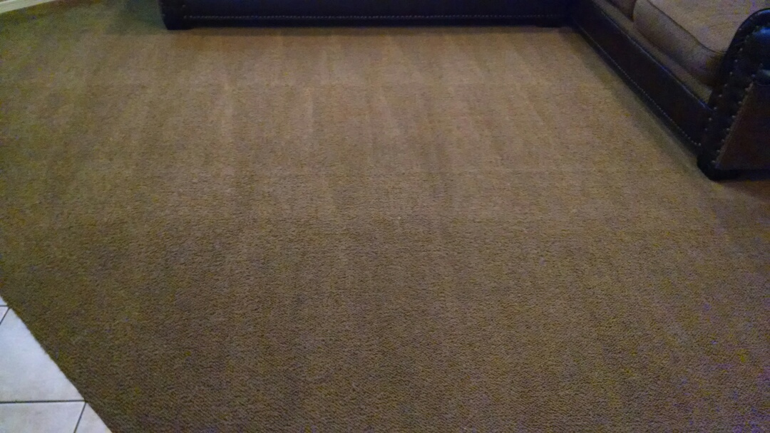 Cleaned carpet for a new PANDA family in Queen Creek AZ 85142.